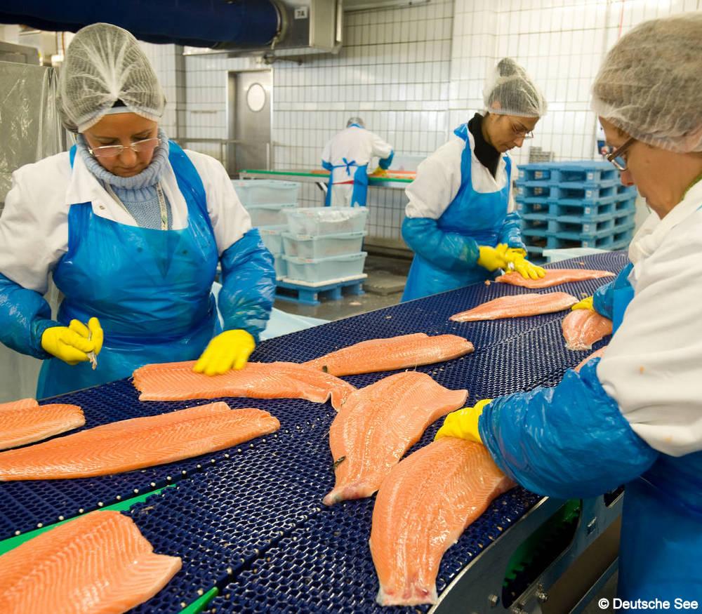 Die Fischmanufaktur