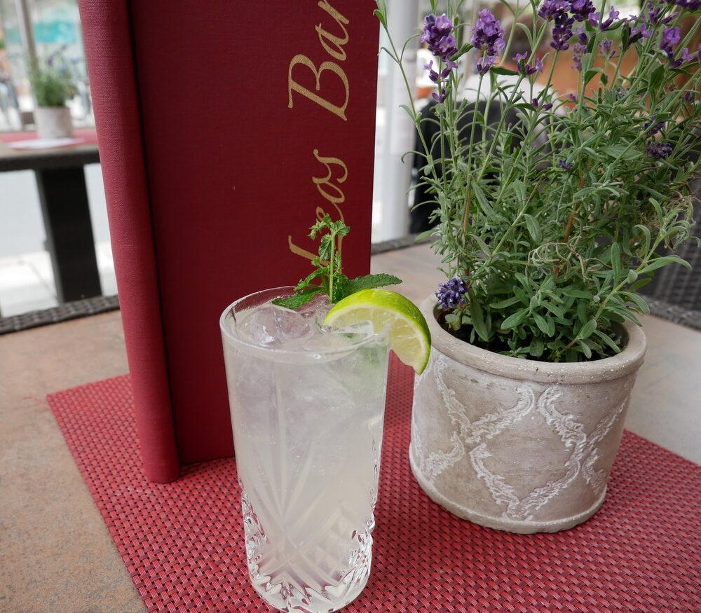 Zutaten für den Gin Gin Mule